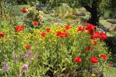mendocino-resort-gardens-19
