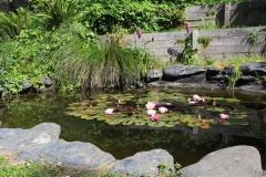 mendocino-resort-gardens-21