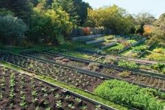 mendocino-resort-gardens-9