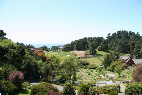 ocean-view-stanford-inn-mendocino
