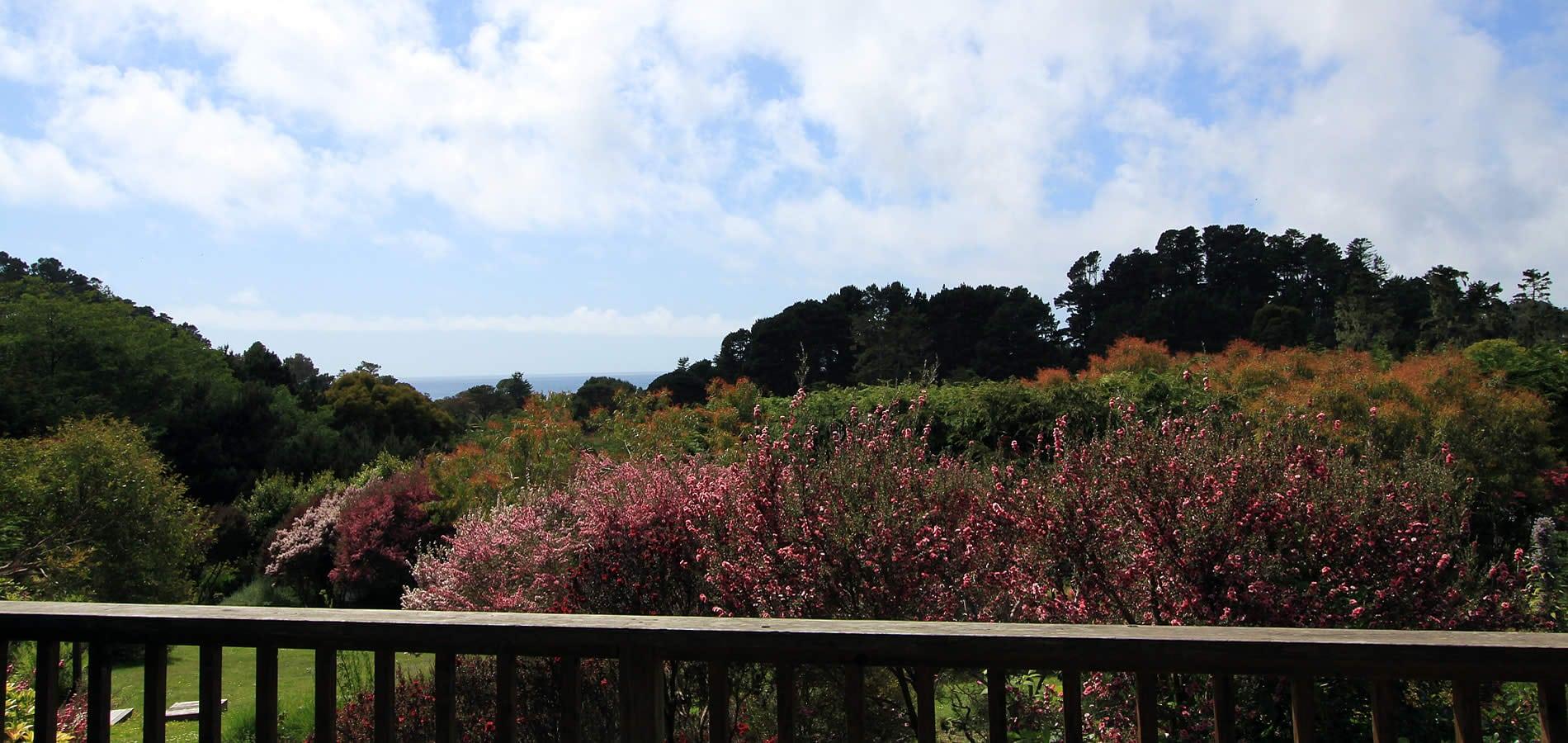garden view to ocean view from stanford inn mendocino hotel & resort