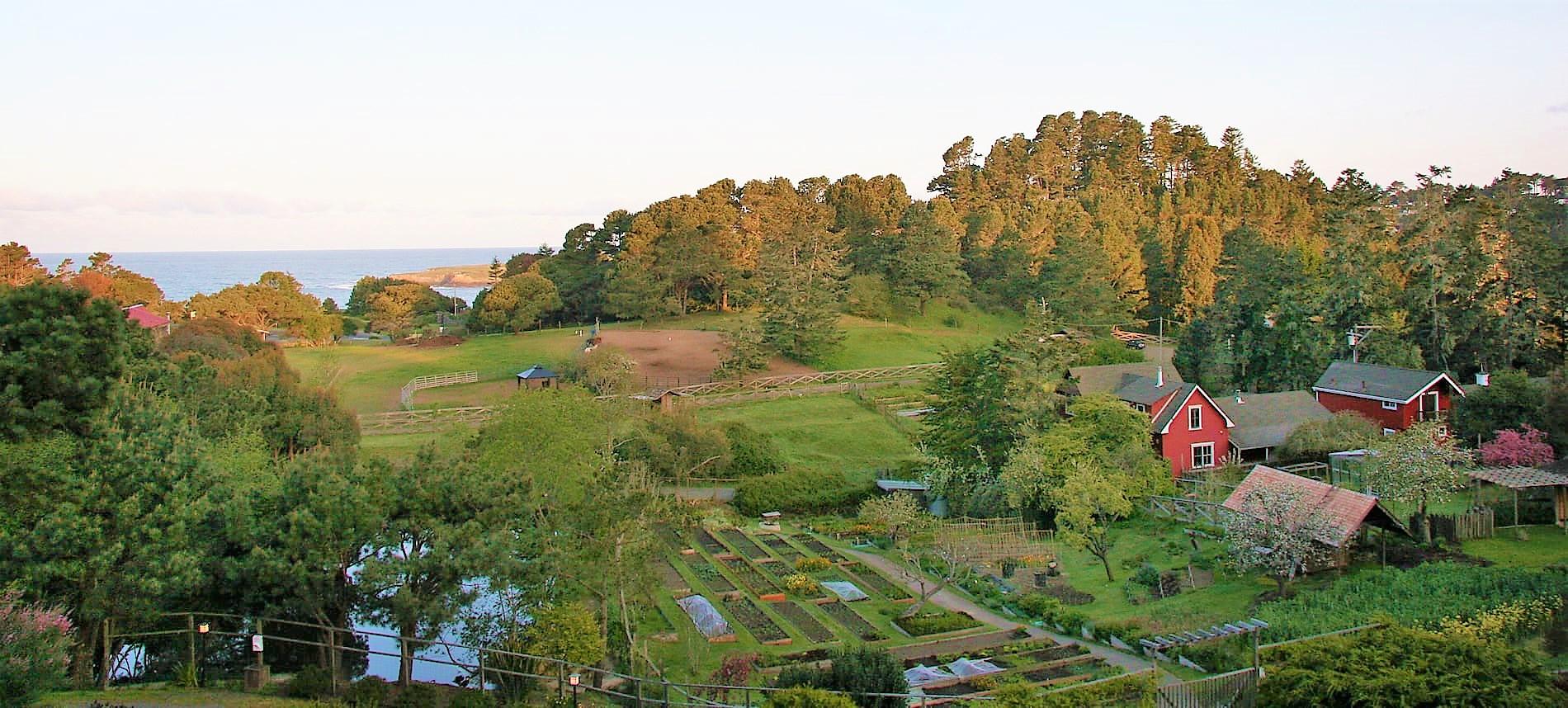 organic gardens at the stanford inn mendocino coast hotel & resort