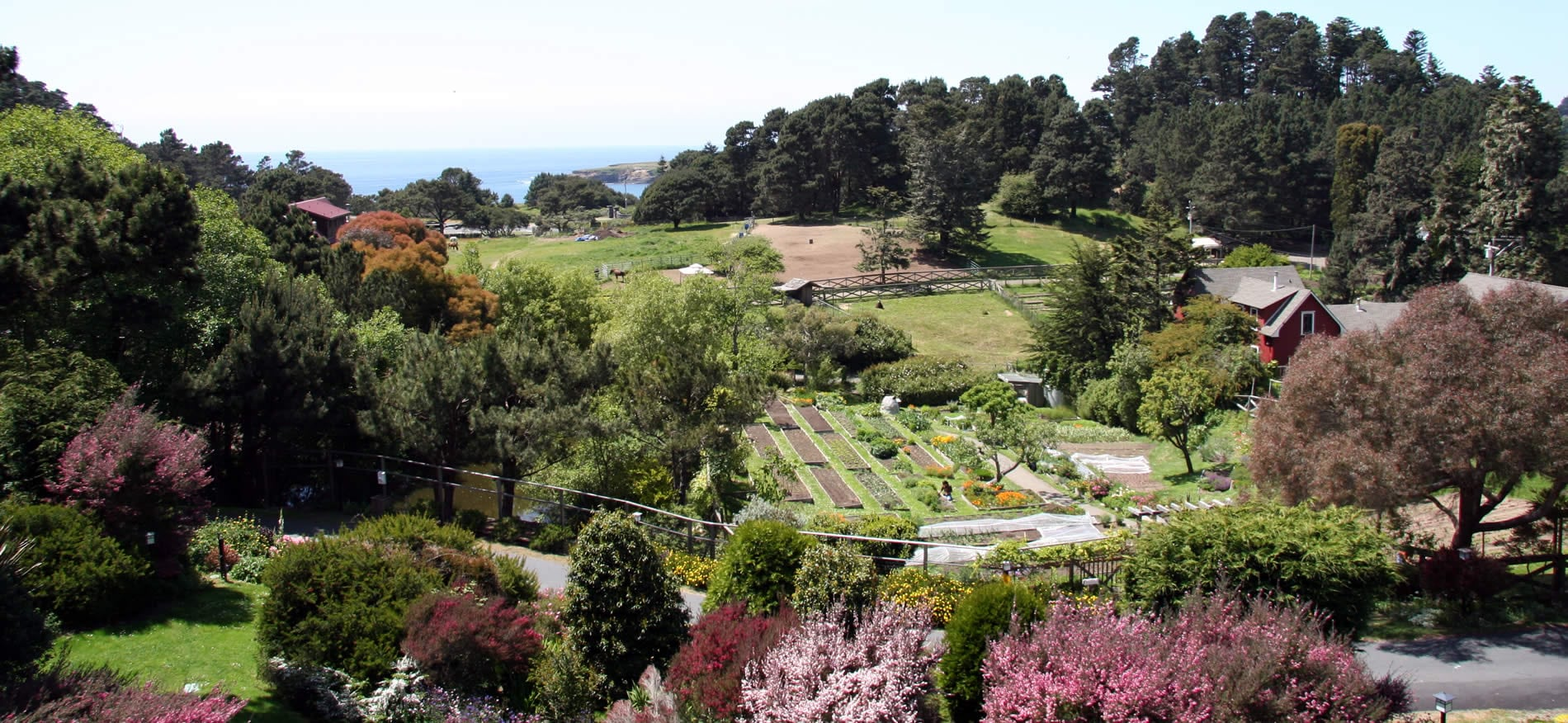 stanford inn mendocino hotel & resort ocean view over the gardens