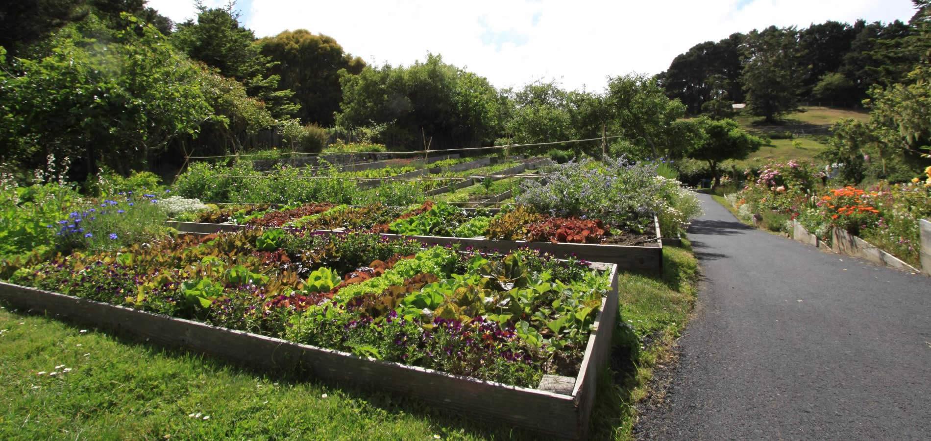mendocino resort organic gardens overview