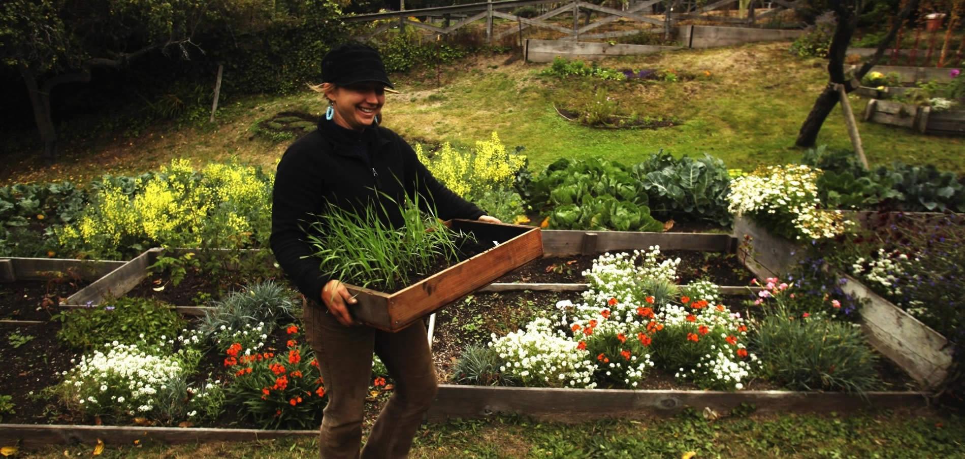 mendocino stanford inn environmental field school